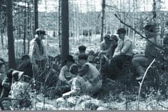 Skogsgardister 1 a
